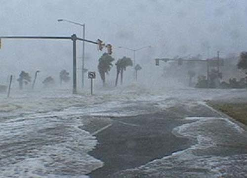 Hurricane disasters in the world