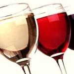 Primi rudimenti sulle fasi di degustazione del vino per principianti.