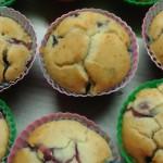 muffin sfornati