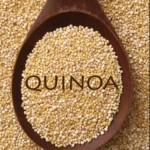 Proprietà e controindicazioni quinoa