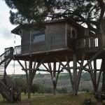 """Casa sull'albero presso l'agriturismo """"La Piantata"""" di Viterbo"""