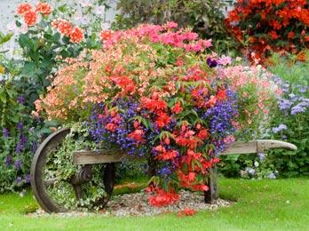 giardinaggio artigianale