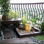 giardino bonsai 1