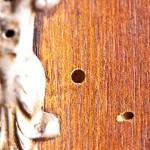 59-mobile-con-tarli-del-legno-disinfestazione@mini