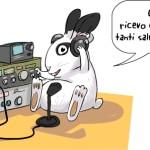 coniglio radioamatore che trasmette su varie radiofrequenze