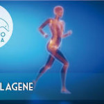 collagene 3