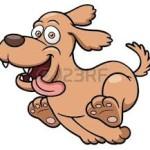 principale cane