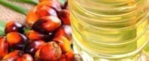 olio palma 2